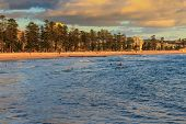 picture of early morning  - Early morning swimmers at Manly beach with people walking along sand - JPG