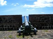 Canon On Fort