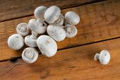 stock photo of champignons  - Horizontal photo of pile of small fresh mushrooms champignons on wooden board table with single one out from the heap - JPG