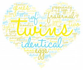 image of zygote  - Twins heart shaped word cloud on a white background - JPG