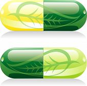 stock photo of pain-tree  - vector illustration of the two natural pills with leaf - JPG