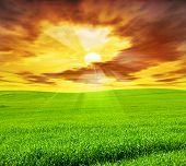 Creative Sunset Landscape