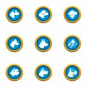 Dog Deal Icons Set. Flat Set Of 9 Dog Deal Vector Icons For Web Isolated On White Background poster