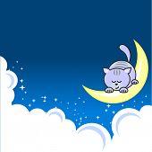Small blue pretty cat sleeping on crescent