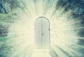 Mystic Door In A Dreamy Rosegarden  With Sunbeam poster