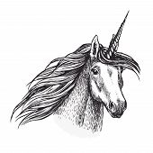 Unicorn, Fantasy Animal Sketch With Head Of Fairy Horned Horse Or Magic Creation. Unicorn With Spira poster