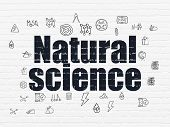Science Concept: Painted Black Text Natural Science On White Brick Wall Background With  Hand Drawn  poster