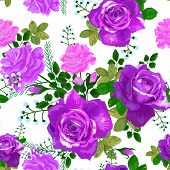 Beautiful Seamless Pattern With Pink, Violet, Purple Roses On A White Background.vector Illustration poster