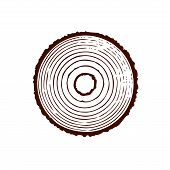 Tree Trunk With Rings. Annual Tree Growth Rings. Vector Illustration Isolated On White Background. poster