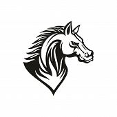Thoroughbred Racehorse Animal, Isolated Profile Of Horse Head. Vector Mustang Stallion Monochrome Ta poster