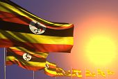 Cute Any Celebration Flag 3d Illustration  - Many Uganda Flags Placed Diagonal On Sunset With Place  poster