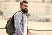 Looking More Brutal. Brutal Caucasian Man With Long Beard On Urban Background. Brutal Hipster Wearin poster