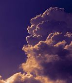 Cumulus Clouds Swirl In Bright Sunlight Against A Dark Blue Sky In A Pre-thunderstorm Atmosphere. poster