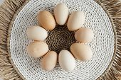 Each Individuality With Its Own Flaws Each Special. Chicken Eggs Of Different Shapes And Different S poster