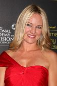 LOS ANGELES - JUN 23:  Sharon Case arrives at the 2012 Daytime Emmy Awards at Beverly Hilton Hotel o