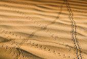 Crossroads in the desert
