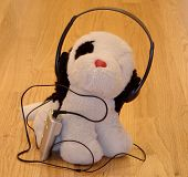 Dog Listening To Mp3 Player