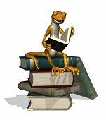 Reading Gecko