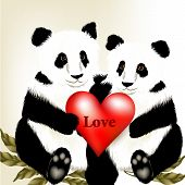 Cute Couple Of Cartoon  Panda Bears Holding Big Red Heart With Word Love