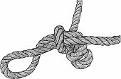 Tangled Knot.eps