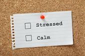 Постер, плакат: Stressed Or Calm