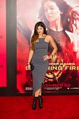 LOS ANGELES, CA - NOVEMBER 18: Kylie Jenner arrives at the premiere of The Hunger Games: Catching Fi