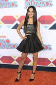 LOS ANGELES - NOV 17: Becky G at the 5th Annual TeenNick HALO Awards at the Hollywood Palladium on November 17, 2013 in Los Angeles, California