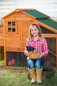 breeder hens kid girl rancher blond farmer playing with chicks in chicken hencoop