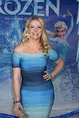LOS ANGELES - NOV 19:  Melissa Joan Hart at the