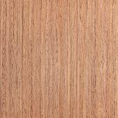 Walnut Wood Veneer, Tree Background