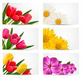 Big Set Of Banners With Spring And Summer Flowers. Vector Illustration.