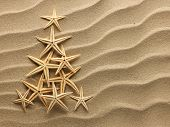 Christmass tree from shells on sand background