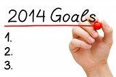 Metas de 2014