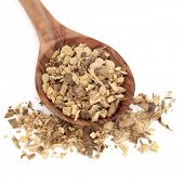 Licorice root used in chinese herbal medicine and food products in a wooden spoon over white backgro