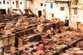 Leather tannery in fez, morocco