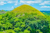 foto of chocolate hills  - Famous Chocolate Hills natural landmark Bohol island Philippines