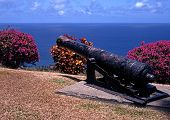 Old gun overlooking sea, Tobago.