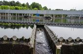 stock photo of sedimentation  - last sewage water treatment stage filtration sedimentation - JPG