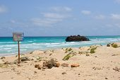 Ship Wreck In Boa Vista Island, Cape Verde