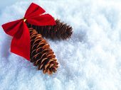 Christmas background. Two beautiful cones with vintage red ribbon on a white snow background. Winter and Christmas concept. Space for your text.