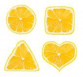 Shapes of lemon fruit isolated on white background