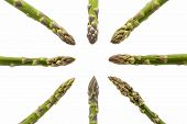 Eight Asparagus Spears Pointing At The Middle
