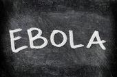 Ebola virus disease text on Blackboard. EBOLA written on chalkboard. Education concept.