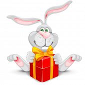 Cute rabbit and red gift box isolated on white background