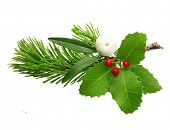 Mistletoe twig, holly berry and fir tree branch christmas decoration over white background.h