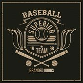 College Baseball Team Emblem