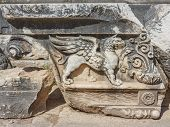 Part Of Relief (griffin)