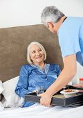 Male caretaker serving breakfast to happy senior woman on bed in nursing home