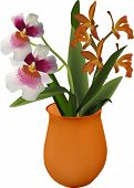 illustration with bunch of orange and pink orchids in vase