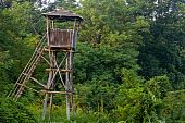 Bird Watch Tower